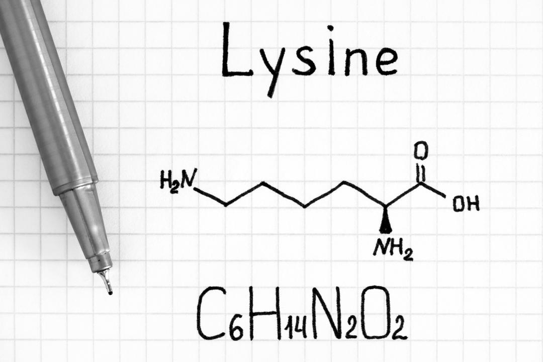 L-Lisina na Nutrição animal
