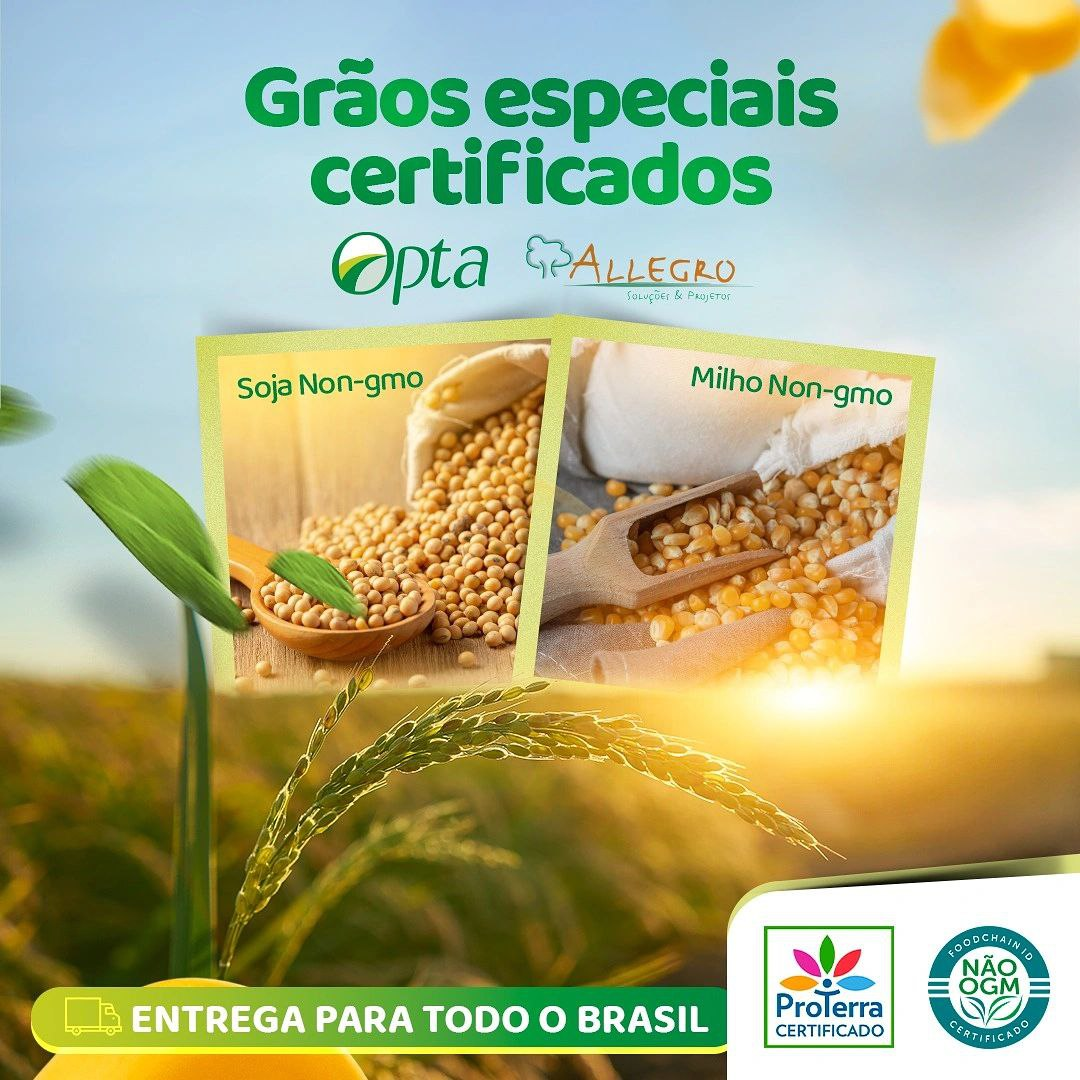 Certified Grains – Sustainability and Safety